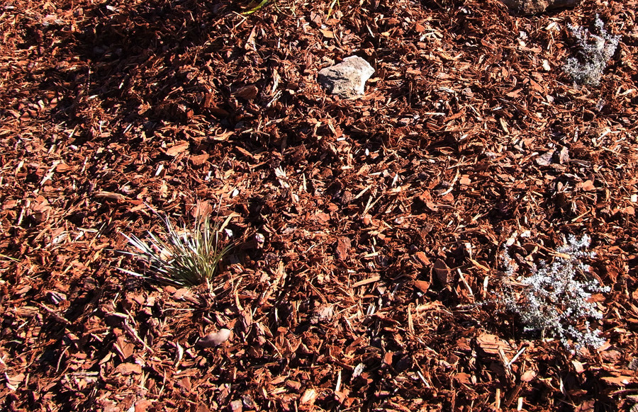 The perfect mulch.